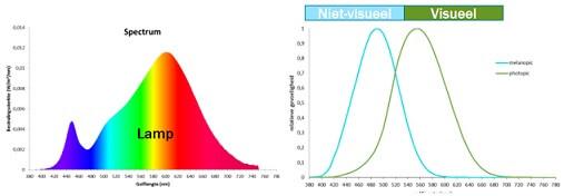 Een lamp heeft een fototopische en melanopische verlichtingssterkte.